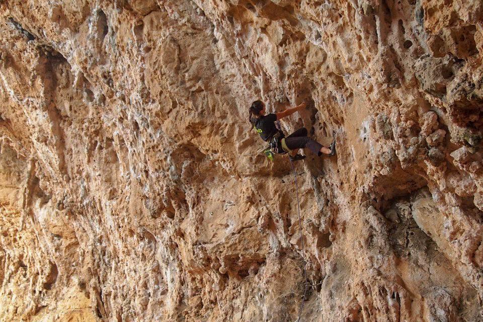 vedere slabă și alpinism îmbunătăți vederea aloe